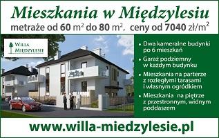 Willa Międzylesie